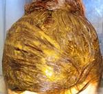 Для чего применяют маски для волос с горчичным порошком