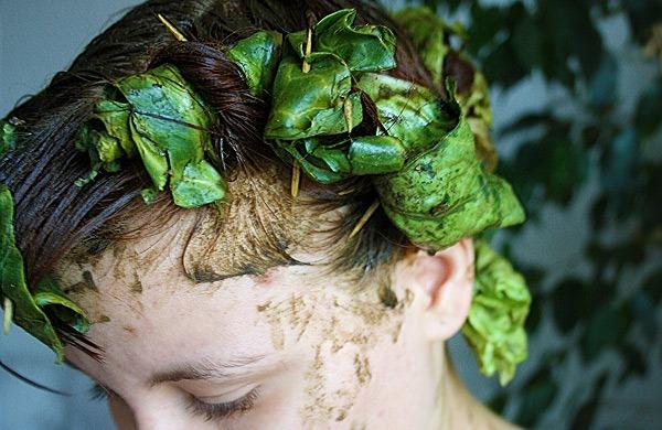 Как нанести маску для волос с алое